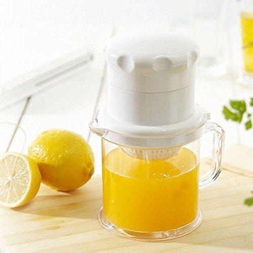 8007 omega juicer - 5