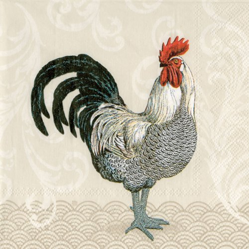 Ideal Home Range 20 Count Paper Luncheon Napkins, Mr. Rooster Cream