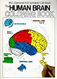 img - for The Human Brain Coloring Book (Cos, 306) by Marian C. Diamond (1985-11-27) book / textbook / text book