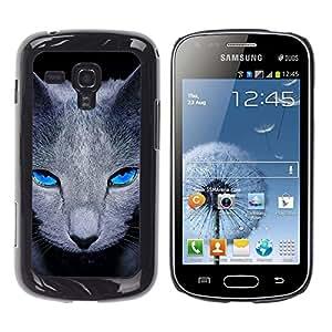 Be Good Phone Accessory // Dura Cáscara cubierta Protectora Caso Carcasa Funda de Protección para Samsung Galaxy S Duos S7562 // Grey British Shorthair Cat Pet Blue Eyes