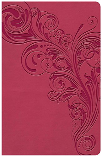 KJV Large Print Personal Size Reference Bible, Pink Leathertouch Indexed