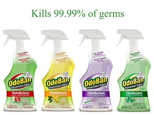 32 Ounce Spray Disinfectant - OdoBan Disinfectant Odor Eliminator and All Purpose Cleaner Ready-to-Use 32 oz Spray Bottle, 4-Scent Assortment (Pack of 4)
