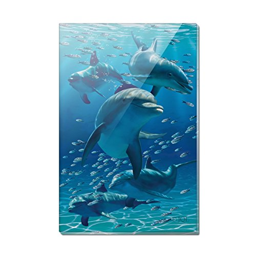 Dolphins Pod Underwater Diving Ocean Rectangle Acrylic Fridge Refrigerator - Dolphin Magnet