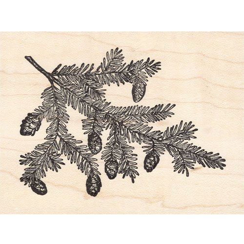 Scrapbooking Pinecones - Pine Tree Branch With Pinecones Rubber Stamp
