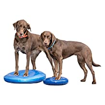 Fitpaws Balance Disk, 14-Inches, Blue, Training DVD, 2-Surfaces