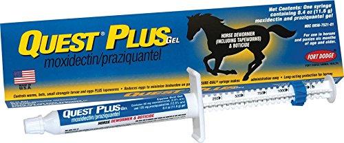 Quest Gel Dewormer (QUEST PLUS HORSE DEWORMER GEL - 0.40 OUNCE)