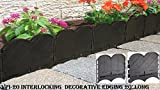 Valley View VPI-20 Interlocking Decorative Edging Lawn, 20', Black