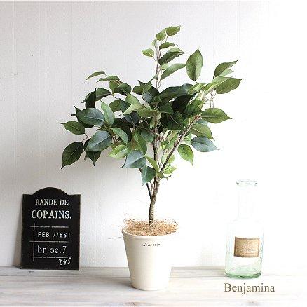 テーブルベンジャミン 60cm 観葉植物 造花 インテリア 消臭◎CT触媒 B06Y5WT964