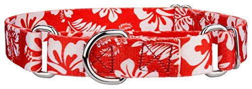 Red Hawaiian Dog - Country Brook Petz Red Hawaiian Martingale Dog Collar - Medium