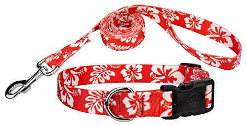 Red Hawaiian Dog - Country Brook Design Red Hawaiian Deluxe Dog Collar & Leash - Large