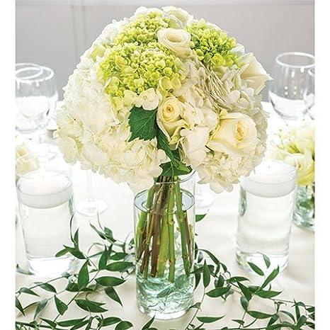 Amazon Glass Cylinder Vases Bulk Set Of 12 For Wedding