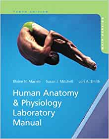 holes essentials anatomy and physiology 11th edition pdf