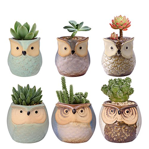 WITUSE Mini Owl Pot Ceramic Cactus Planter Pot Succulent Plant Pot for Indoor Outdoor Plants -6 Pots