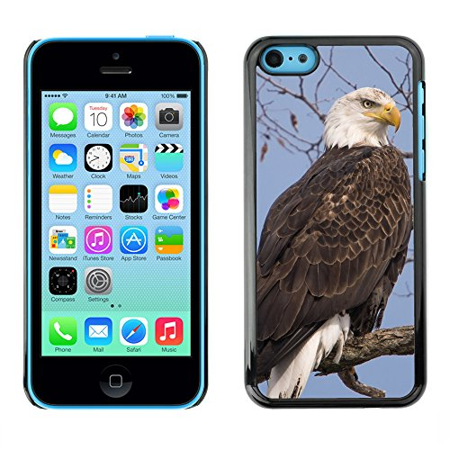 Premio Sottile Slim Cassa Custodia Case Cover Shell // F00019291 Le roi des oiseaux // Apple iPhone 5C