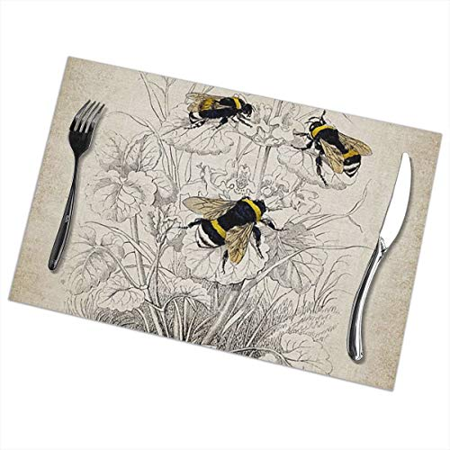 (Wansanc Placemats for Dining Table Vintage Bumble Bee Illustration Bowl Mat Non-Slip Insulation Washable Table Mats Set of 6 (6pcs Placemats))
