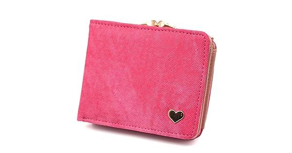 Amazon.com: 2019 - Monedero pequeño para mujer, diseño de ...