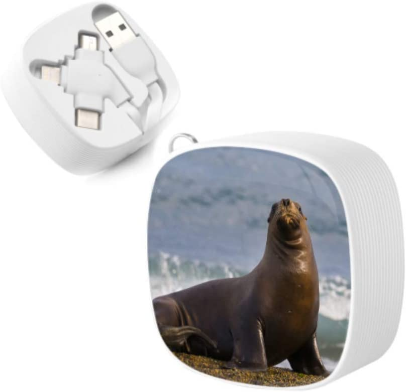 Multi Retractable Charging Cable Cute Ugly Sea Lion Animal Multi 3 in 1 Retractable USB Cables with Micro USB//Type C Compatible with Cell Phones Tablets and More