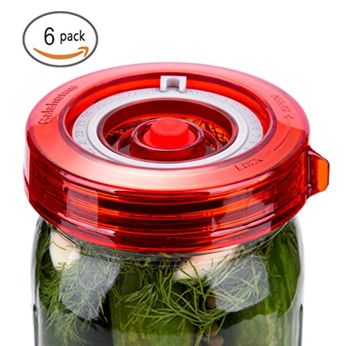 6-Pack Fermenting Lids Kit w/ Bonus Pump, galahome Waterless Airlock For Mason Jar Fermentation, Turn Wide Mouth Jars to Crock Pots, Red ( 2 Colors Available - Kit Lid