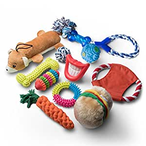 Pet Supplies : Dog Toys and Puppy Toys - 11 Piece Value