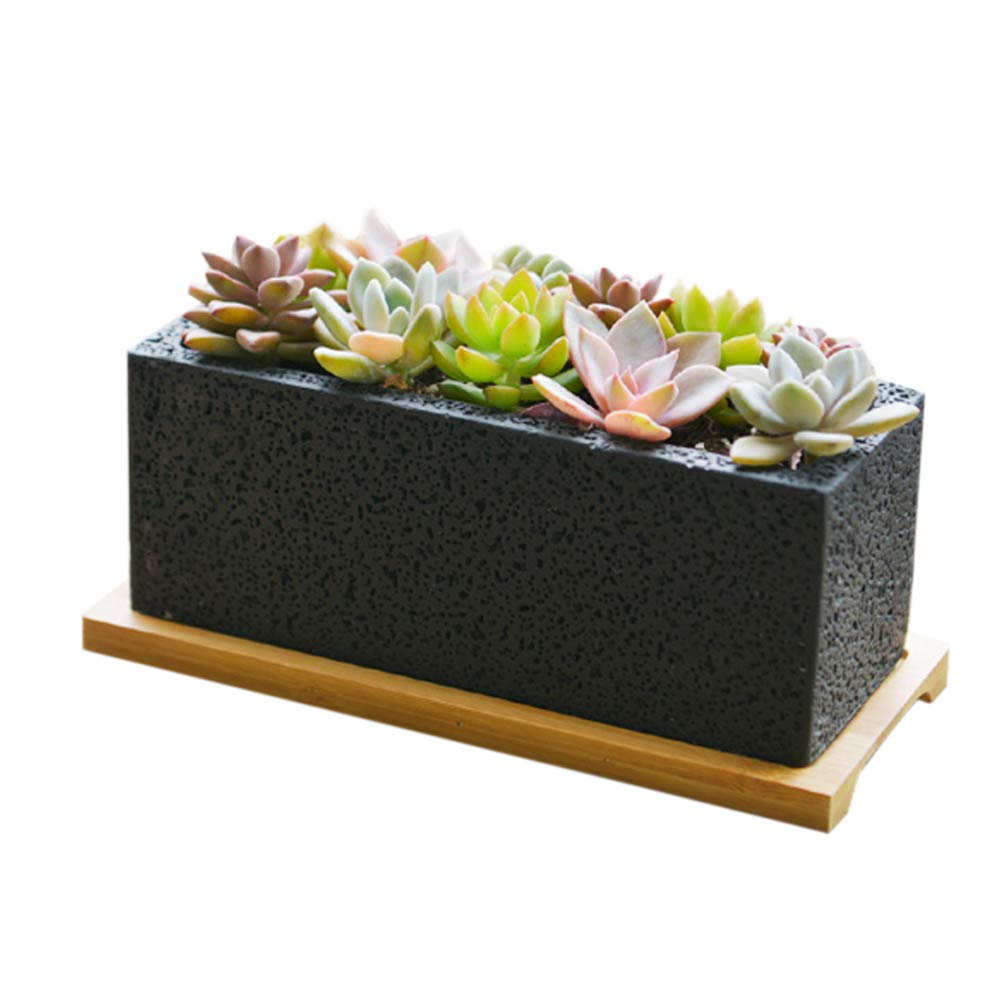 Nattol 8.5 inch Succulent Planter in Rectangle, Window Box with Bamboo Saucer (Black)