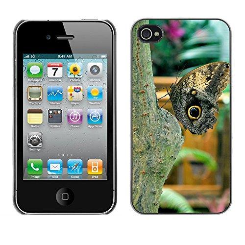 Premio Sottile Slim Cassa Custodia Case Cover Shell // F00009825 papillon // Apple iPhone 4 4S 4G