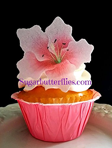 - Edible Wafer Paper Star Gazer Lilly Flower Cake Decorations Cupcake Toppers Set of 12