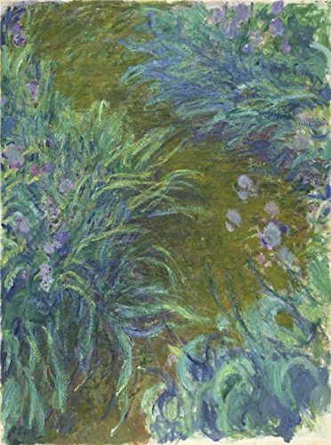 [The High Quality Polyster Canvas Of Oil Painting 'Claude-Oscar Monet - Irises,about 1914-17' ,size: 8x11 Inch / 20x27 Cm ,this High Quality Art Decorative Prints On Canvas Is Fit For Laundry Room Artwork And Home Gallery Art And Gifts] (Kenneth The Page Costume)