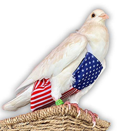 Bev's Bird Boutique – Patriot Flyper Xtra Large – Open Back Style