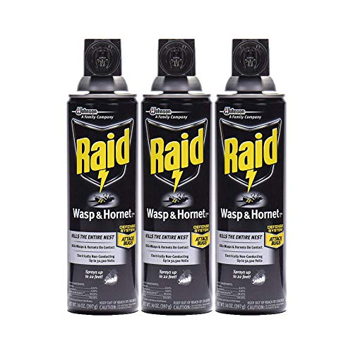 Raid Wasp & Hornet Killer Spray, 14 OZ (Pack - 3) (Best Wasp Nest Killer Spray)