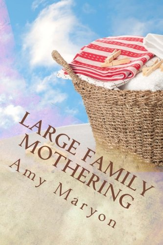Large Family Mothering: Building your home one piece at a time