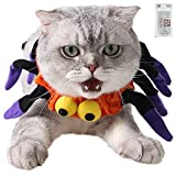 Bolbove Adjustable Spider Halloween Pet Neck Wear for Cats & Small Dogs Party Costume Free Size