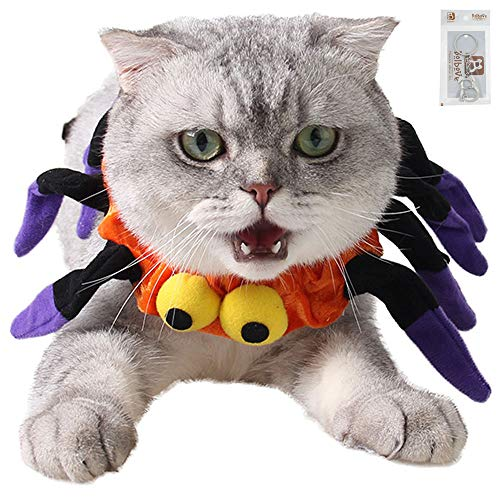 Bolbove Adjustable Spider Halloween Pet Neck Wear for Cats & Small Dogs Party Costume Free Size]()