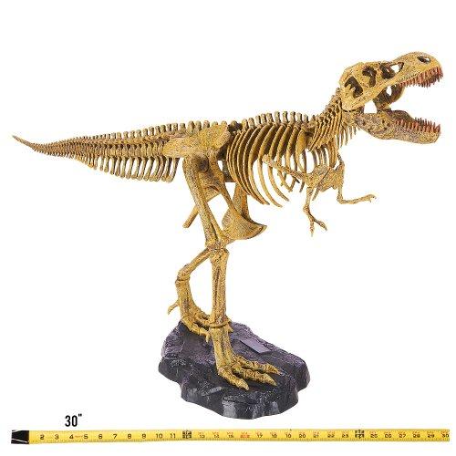 EduScience - Wacky Lab - Mighty T-Rex Model Kit by Beckett P