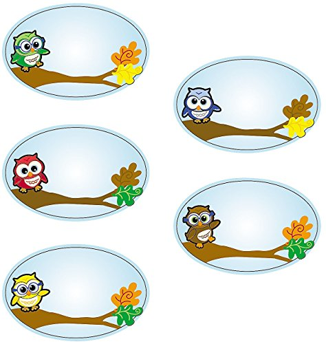 1 Roll ~ Owl Name Tag Stickers ~ Approx. 3 1/2