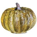 5.25''Hx6''W Artificial Pumpkin w/Battery Operated Light -Light Brown/Gray (pack of 4)