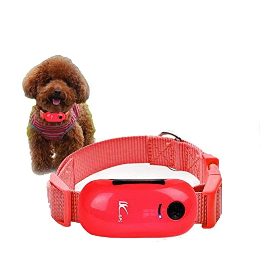 Tik Rastreador de Mascotas - Collar de Seguimiento GPS para ...
