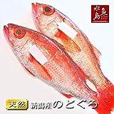 魚水島 のどぐろ 新潟・日本海産 ノドグロ 400g以上・2尾(生冷凍)
