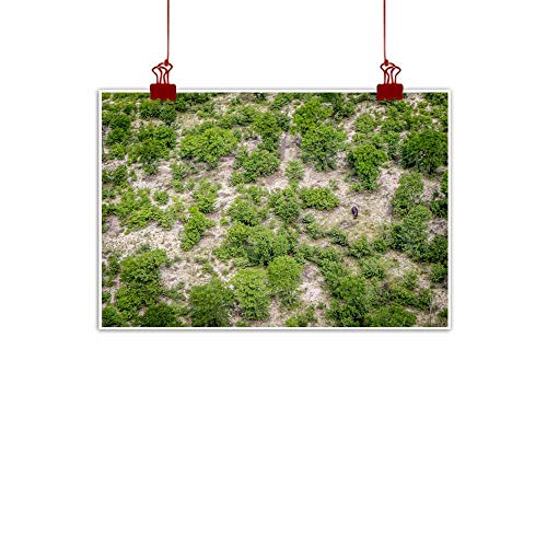 duommhome Wall Art Decor Poster Painting Aerial View of a Hippo in The Okavango Delta Modern Minimalist Atmosphere 24