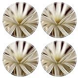 Liili Round Coasters Image ID 23252581 Flowering cactus Echinopsis Setiechinopsis mirabilis macro shot