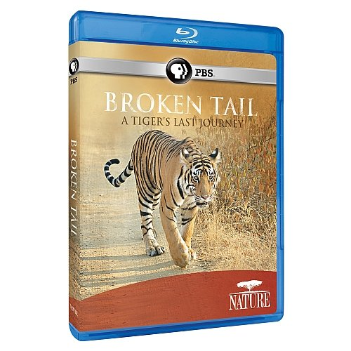 Blu-ray : Nature: Broken Tail: A Tiger's Last Journey (Blu-ray)