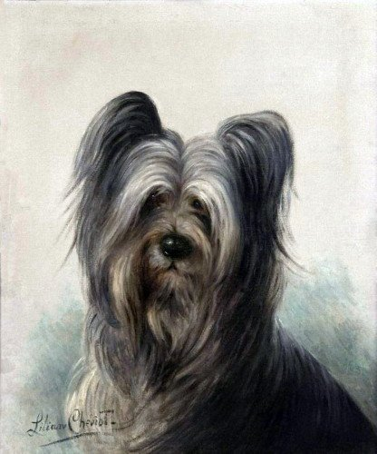 c1910~L.Cheviot Art~Very Sweet Skye Terrier Puppy Dog Profile~6 pack NEW Matte Vintage Picture Large Blank Note Cards with Envelopes