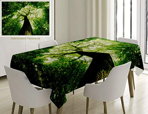 Unique Custom Cotton And Linen Blend Tablecloth Forest Home Decor Sunlights To Woodland Wild Habitat Summer Rays Dreamy Foliage Park Landscape GreenTablecovers For Rectangle Tables, 86 x 55 Inches