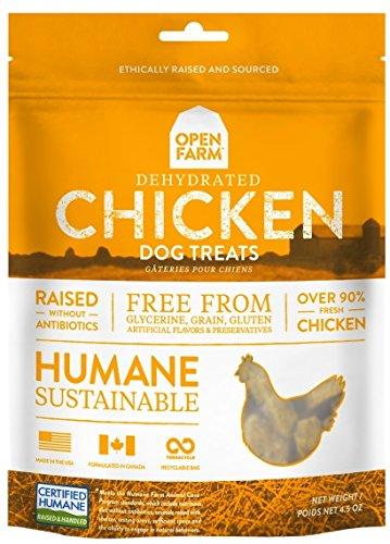 Eden Holistic Dog Food Amazon