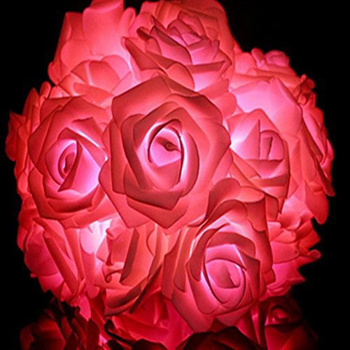 Rose Flower Decorative String Lights Led Battery Box Of