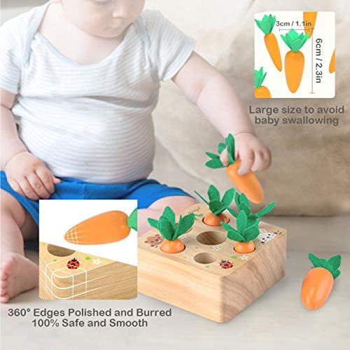 Montessori Toys for 1 Year Old Boys and Girls,Carrots Harvest Wooden Educational Toy Shape Size Sorting Puzzle Developmental Learning Gifts for Toddlers