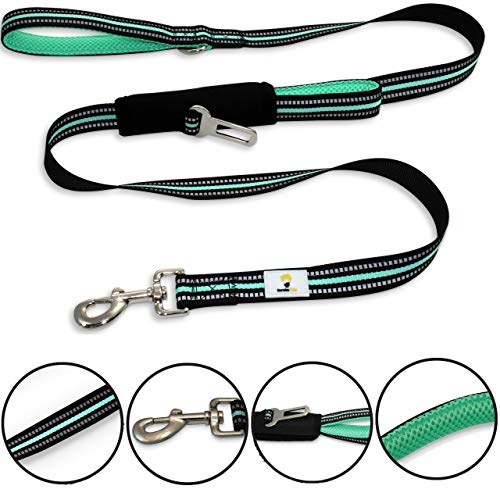 Dog Seat Belt Leash. 5 feet Long. Dual Handle. Reflective Threads Dog Leads for Safety. Training Dog Leash for Control. Small, Medium and Large Dogs. Best Dog Leashes. Heavy Duty Laesh