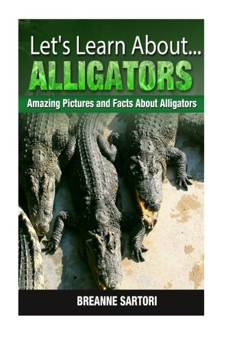 Let's Learn About Alligators- Amazing Pictures and Facts