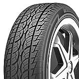 Nankang SP-7 All-Season Radial Tire - 295/35R22 108V