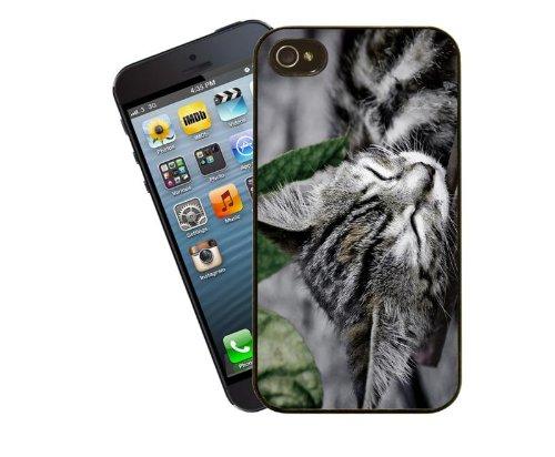 Cat Handy Schutzhülle, Design 15–Sleeping Silber gestromt Kätzchen–für Apple iPhone 5/5S–Cover von Eclipse Geschenk Ideen