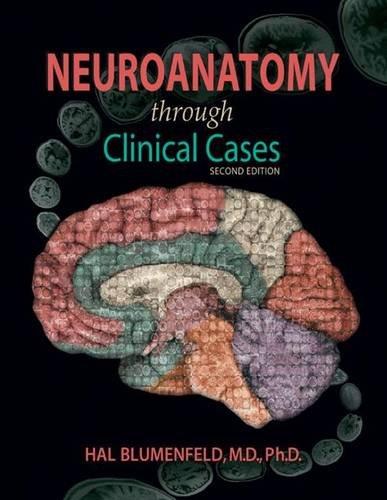 Neuroanatomy Through Clinical Cases, Second Edition